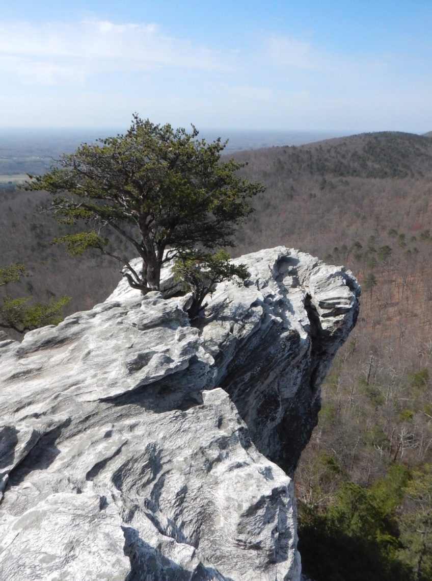 Hanging Rock State Park (NC)