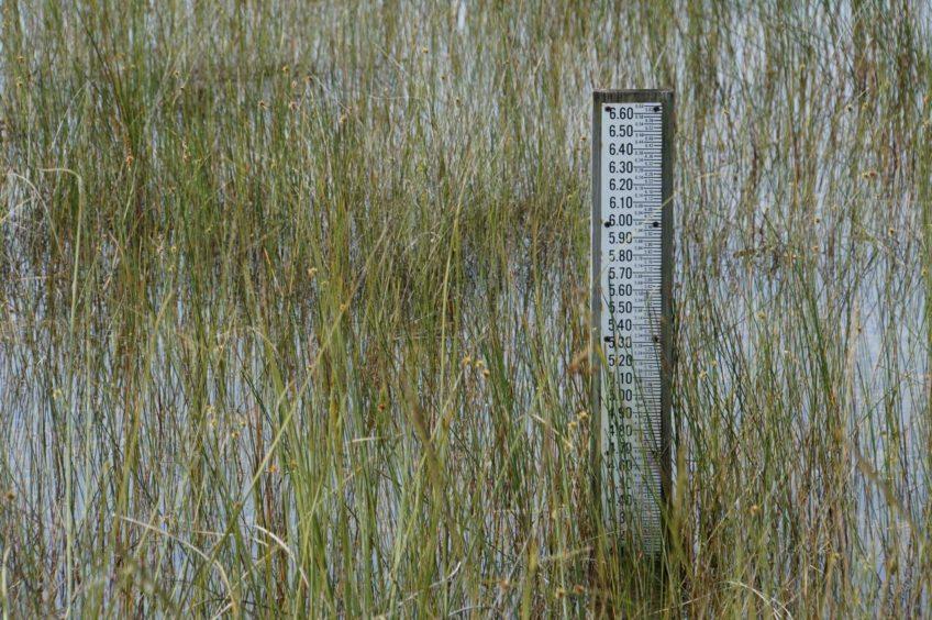 2015.10.06 – The Everglades